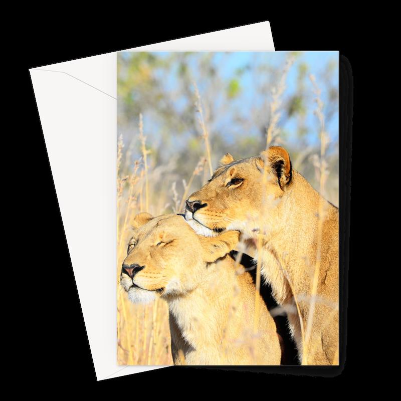 Greeting Card – 1 Card